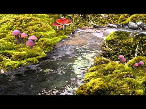 Nature Sounds, Water Stream for Healing, Meditation, Sleeplessness (60mins)