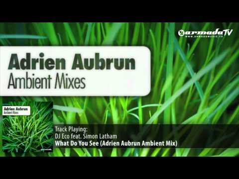 DJ Eco feat. Simon Latham - What Do You See? (Adrien Aubrun Ambient Mix)